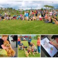 21st Annual Wheaten Fun Day Check out all the photos from the event! Click above photos to visit full gallery