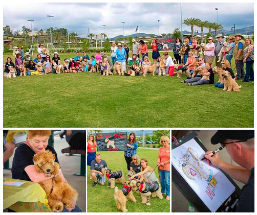 Wheaten Fun Day 2015 featured images