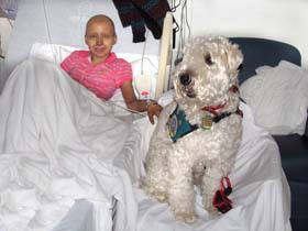 Max the dog, with a patient