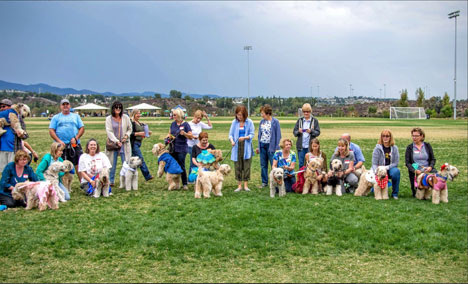 Join us for the 23rd annual Wheaten Fun Day!